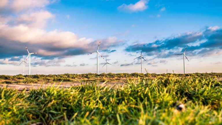 Event: A night of action on renewables